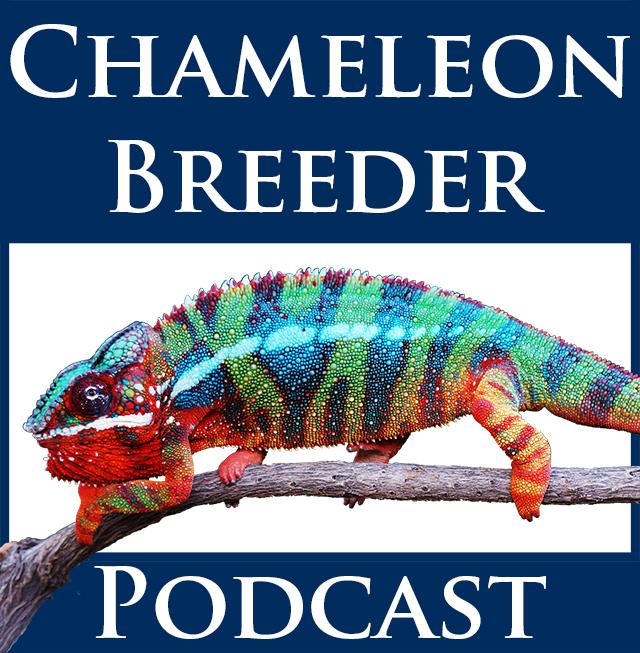 Chameleon Breeder