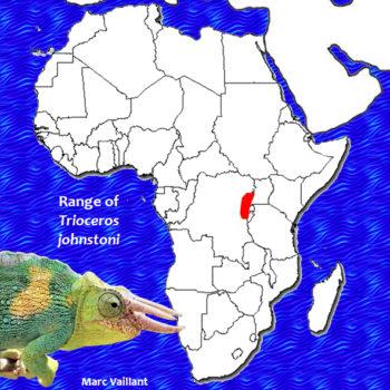 Range map for Trioceros johnstoni