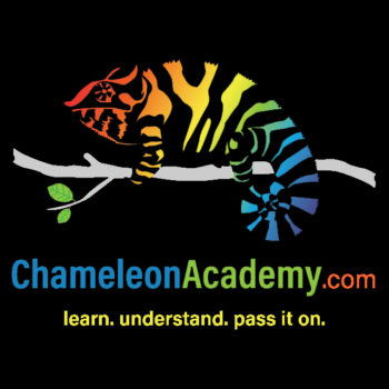 Chameleon Academy Logo with yellow motto