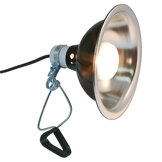 clamp lamp for heating chameleons