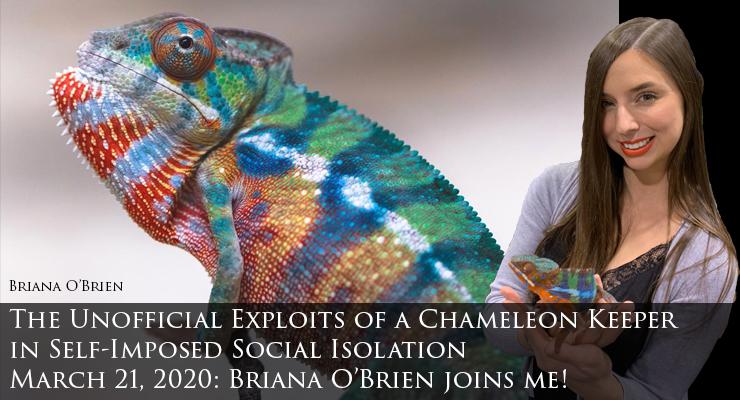 Briana O'Brien joins me
