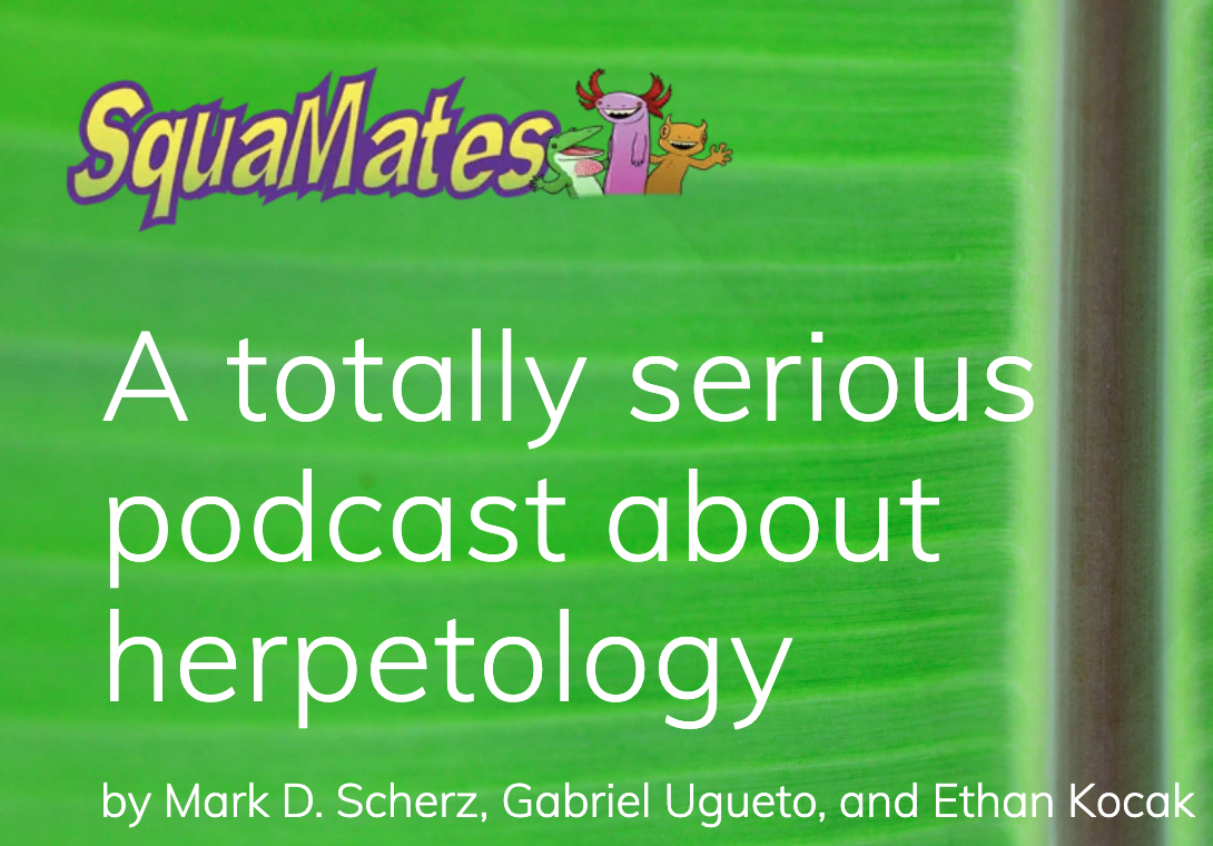 squamates podcast