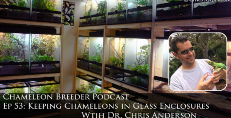 Keeping Chameleons in Glass Cages