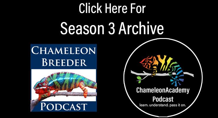 chameleon breeder podcast archive season 3