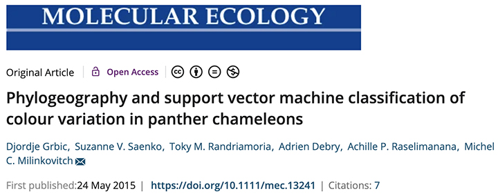 article on panther chameleon species