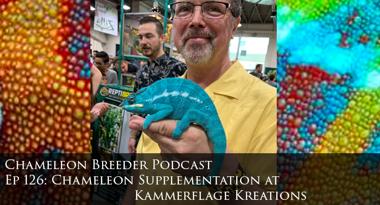 chameleon supplementation at Kammerflage Kreations