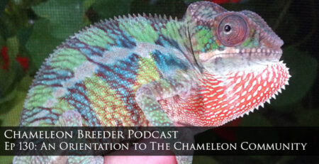 Orienttion to the chameleon community