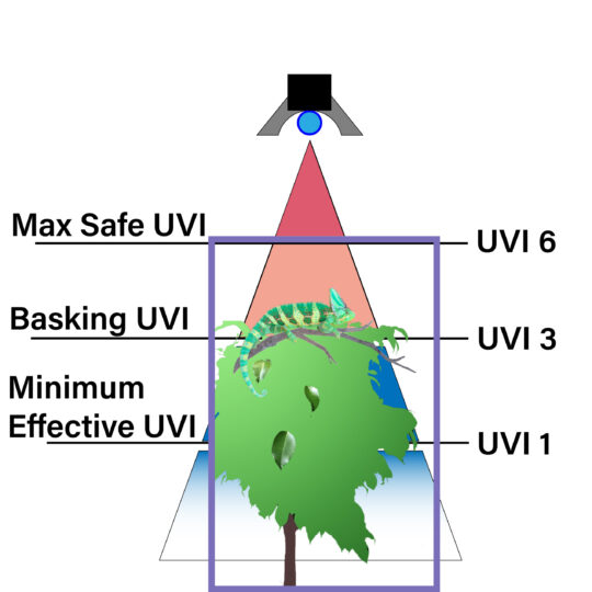 UVB Zones with cage rev C