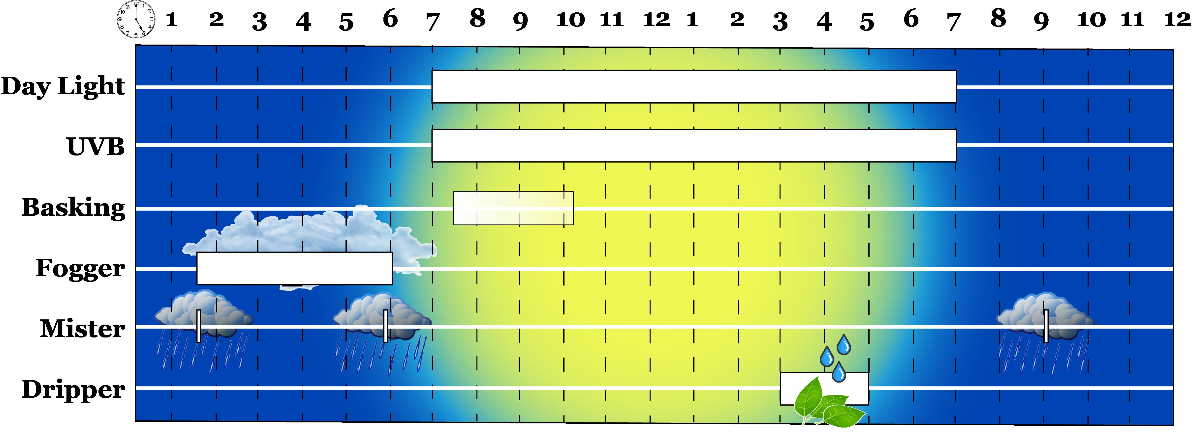 Chameleon Hydration Schedule