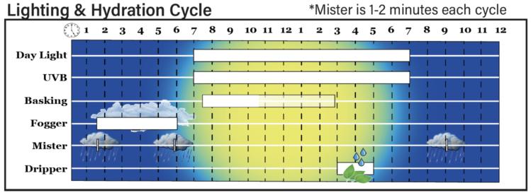 Hydration Schedule