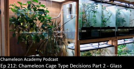 chameleon cages